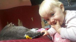 kassid ja lapsed